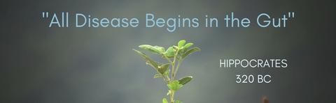 All_Disease_Begins_in_the_Gut_large.jpg