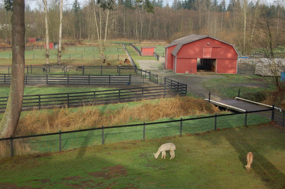 Winter Pasture Management Workshop:  Skagit County, WA