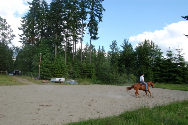 Ask the experts, or check out our  tip sheet on arena building  so that you obtain the correct type and quantity of footing material for your riding discipline.