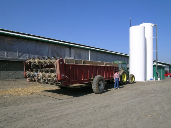 Large, commercial spreaders are well worth the investment for large operations with many head of livestock.