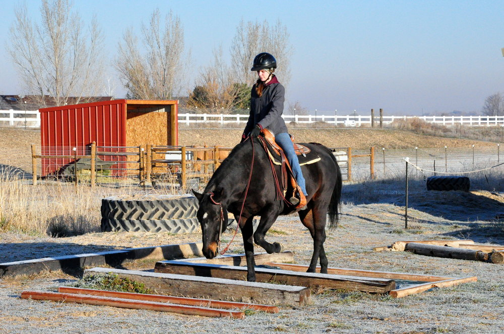 Planning for a permanent area for trail obstacles can keep your arena free for riding, and you from having to set up and take down equipment on a regular basis.