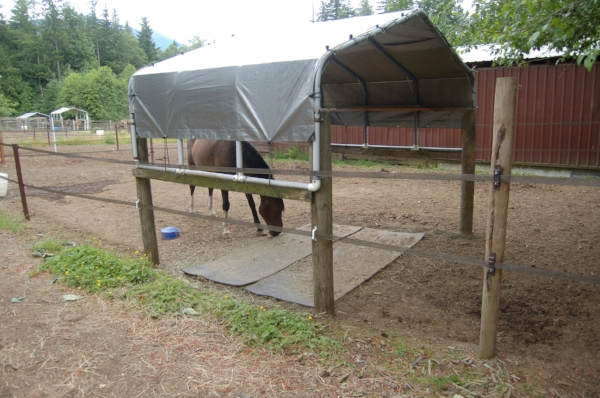 Many times, there is not enough room by the barn to attach a confinement area. Using remote sacrifice areas is a great option; there are many inexpensive ways to provide shelter from sun and driving rain. In this photo, rubber mats are placed in the feeding area so the horses don't ingest dirt with their meals.