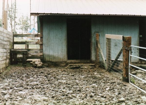 2 - mud before.jpg