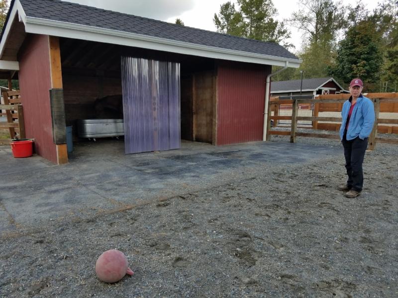 stall mats & gravel footing.jpg
