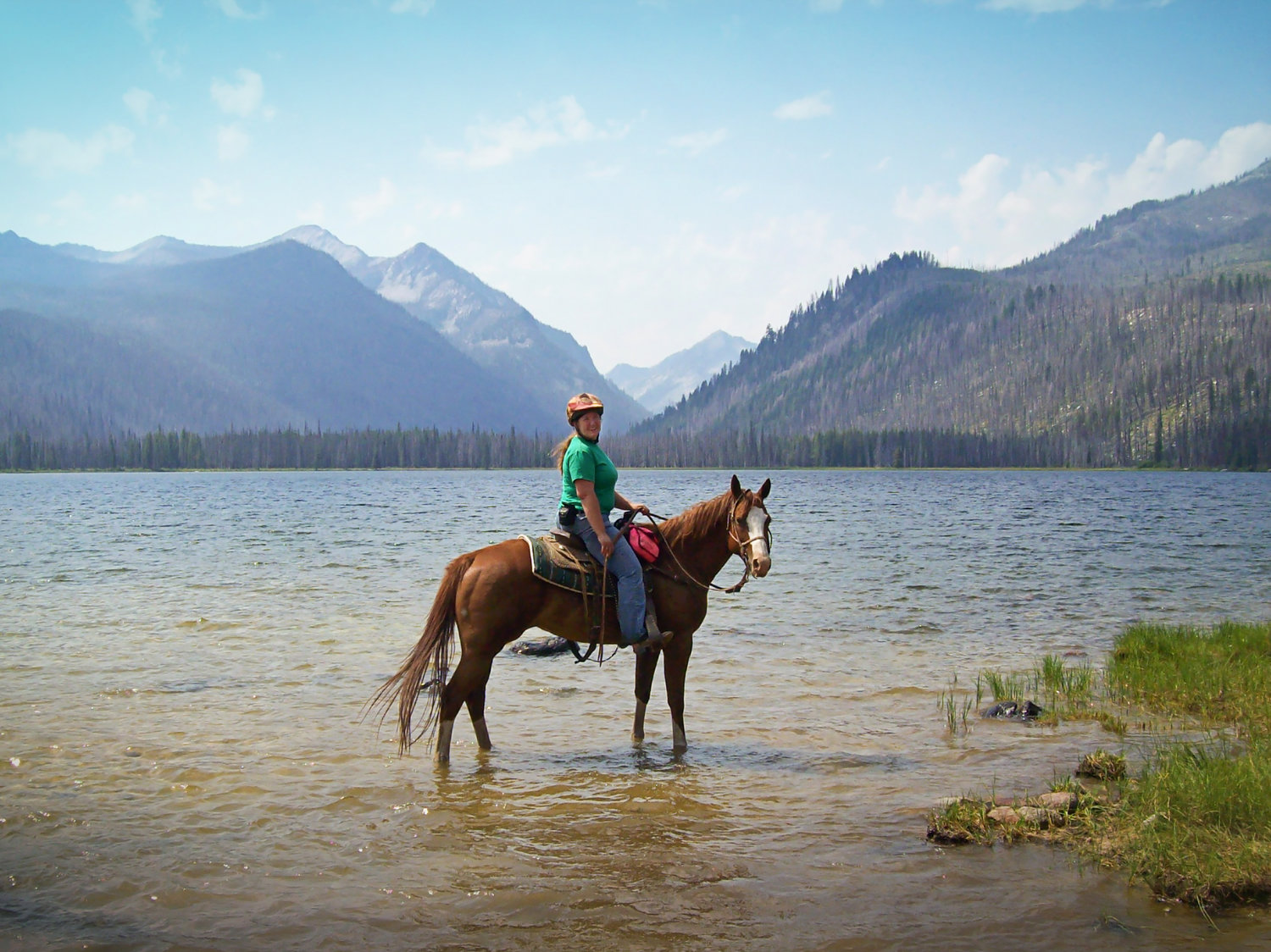 message from the editor the girl on the horse horses for clean water