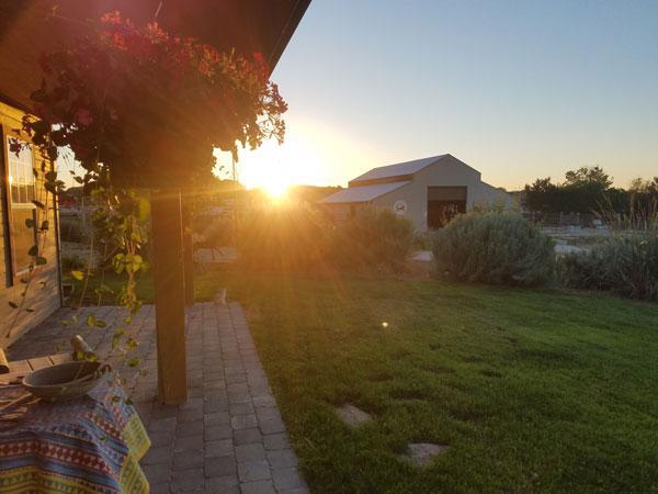 Summer---Sunset.jpg