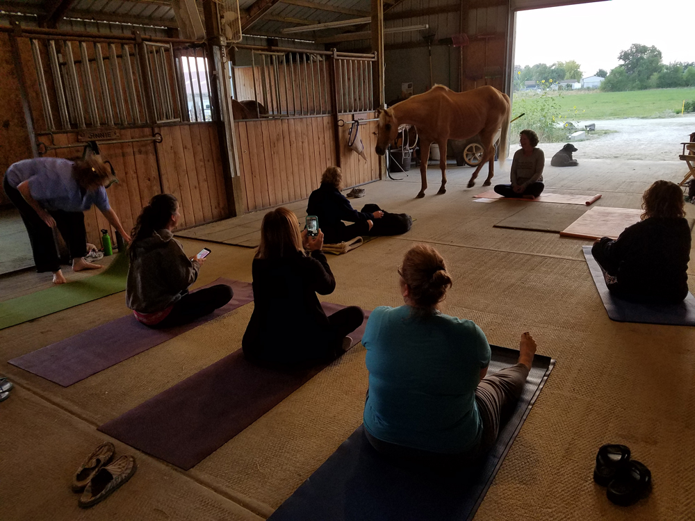 Annie loved to see what was going on. Here she is joining us for morning yoga during a Cowgirl Retreat at Sweet Pepper Ranch.