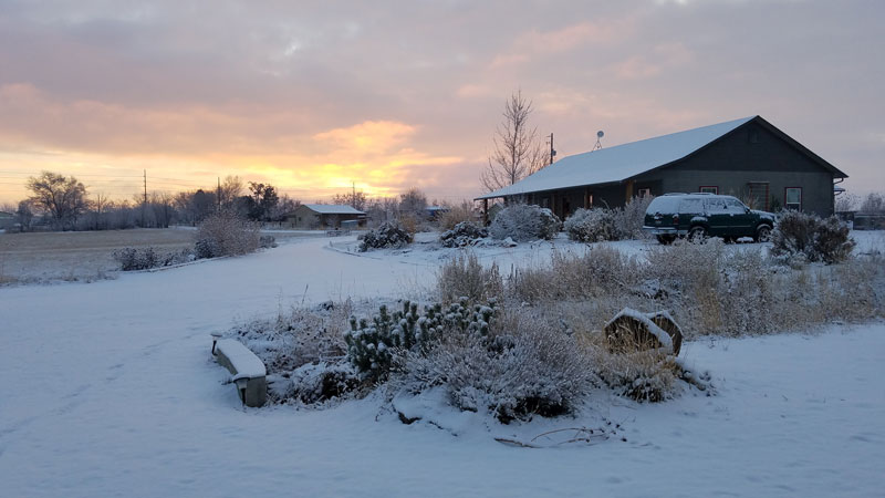 house-in-snow-horses-for-clean-water.jpg