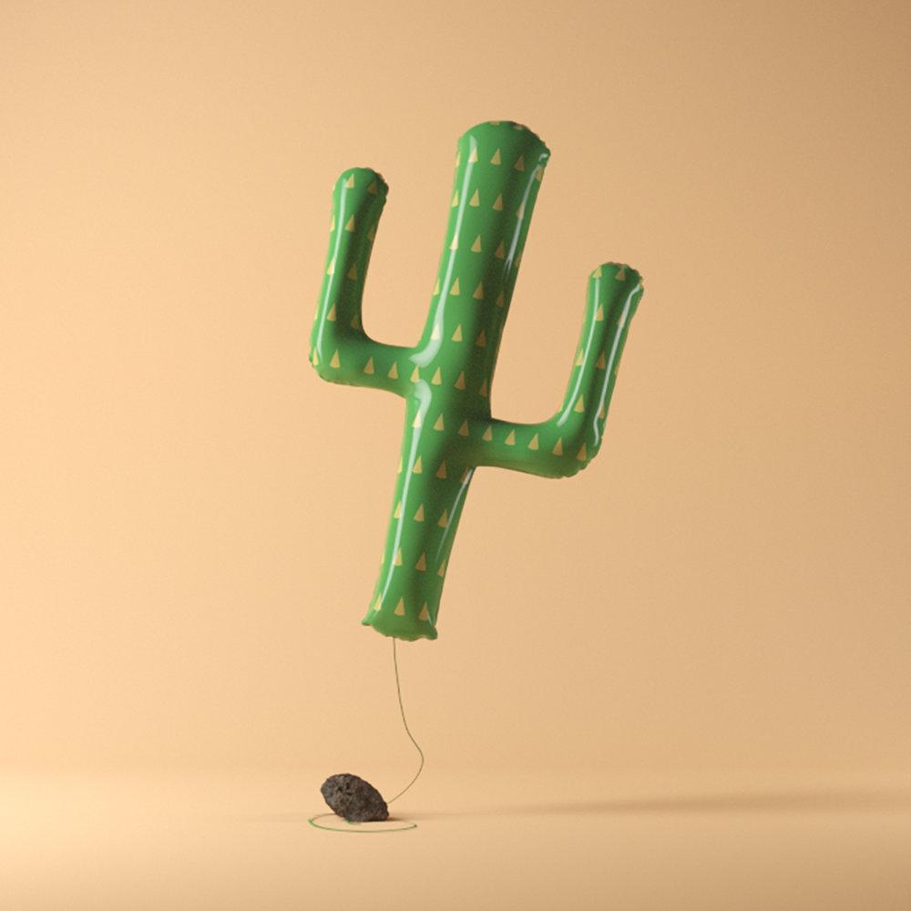 cactusplaon (0-00-00-00).jpg