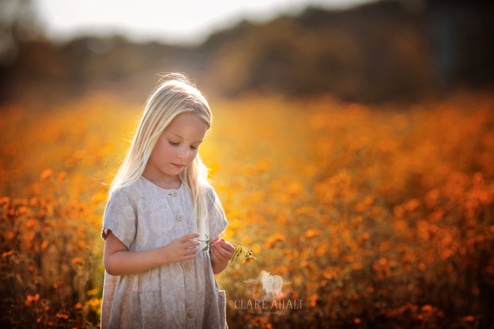 portrait of a little girl in a field of yellow wildflowers photographed by Clare Ahalt Photography, a fine art portrait photographer located in Frederick, MD, serving Maryland, Northern Virginia and Washington DC.  Photographed on location in Northern Virginia at a workshop by Elena Shumilova Photography