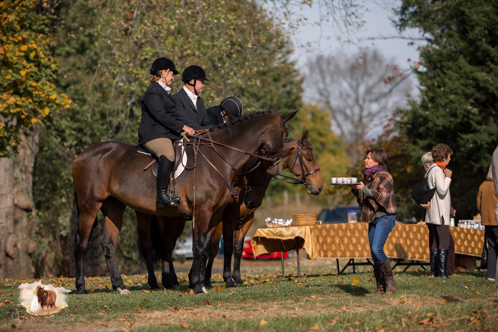 Best_Equestrian_Photographer_Maryland_equine_photographer_northern_virginia_equestrian_Photographer-9.jpg