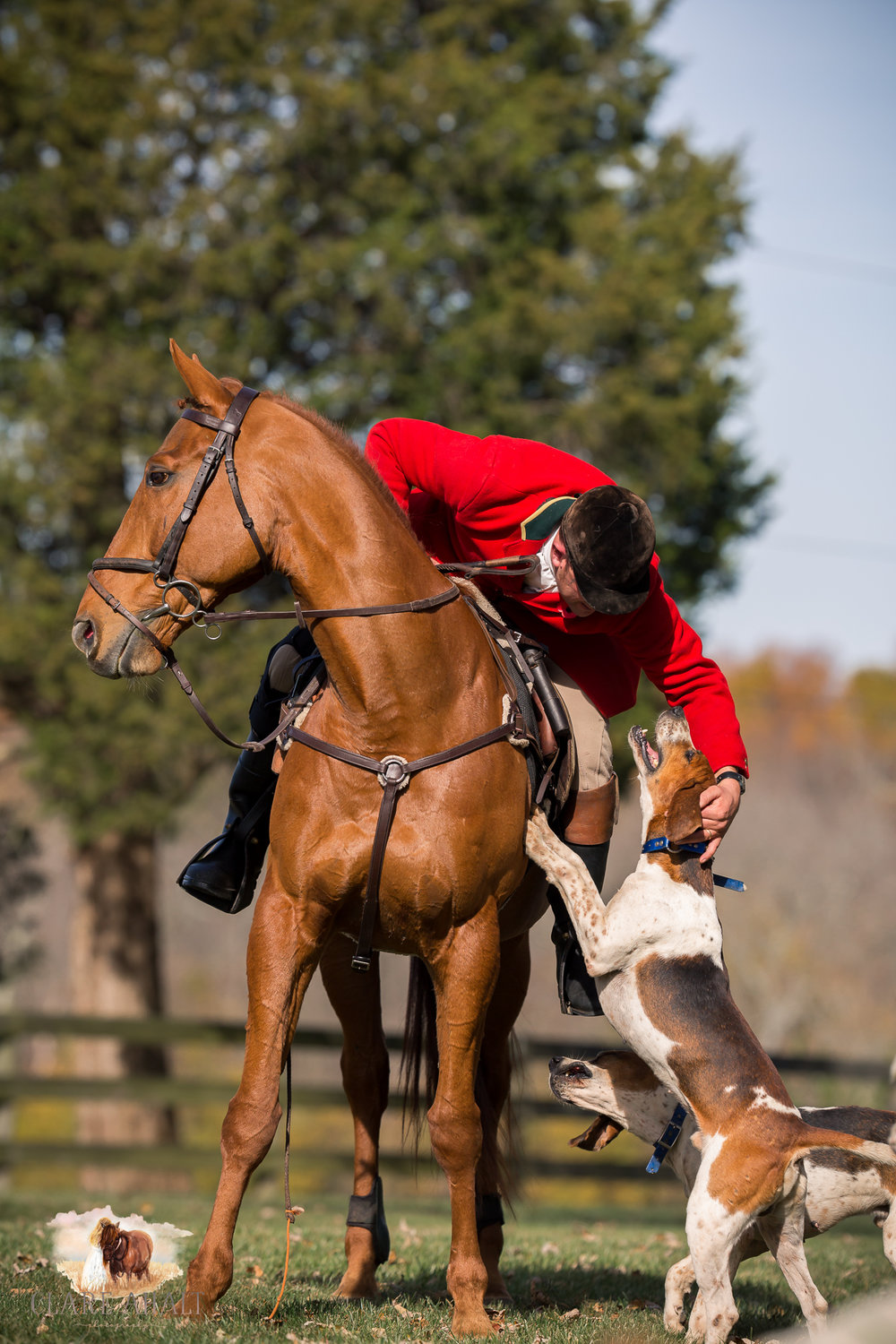 Best_Equestrian_Photographer_Maryland_equine_photographer_northern_virginia_equestrian_Photographer-47.jpg