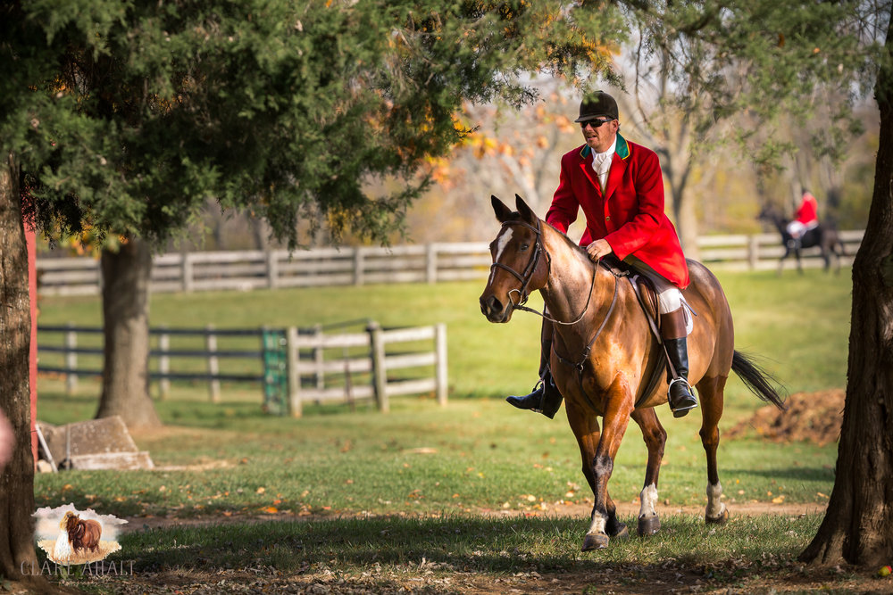 Best_Equestrian_Photographer_Maryland_equine_photographer_northern_virginia_equestrian_Photographer-62.jpg