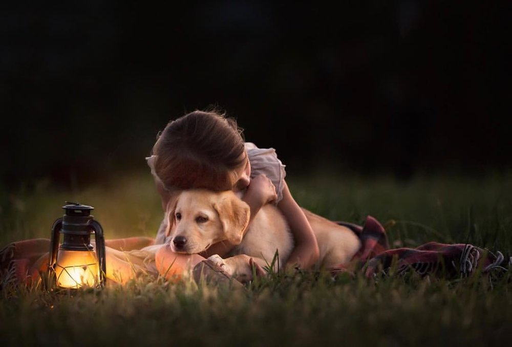 Portrait of a little girl hugging a yellow lab puppy.  Taken on location in Northern Virginia by Clare Ahalt Photography, a fine art portrait photographer located in Maryland during a workshop held by Elena Shumilova