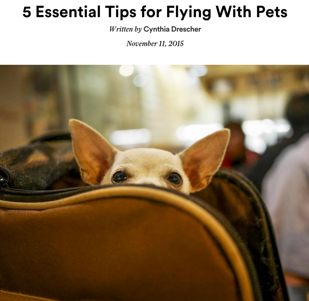 cn-traveler-belen-estacio-flying-with-pets