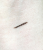 Swatch of Delizioso Skincare Natural Eyeliner/Brow Pencil in Cocoa Bean