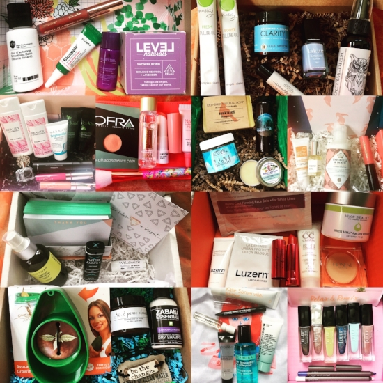 Top row, left to right: Birchbox, Goodbeing. 2nd row,left to right: Glossybox, ipsy, Terra Bella Box, Petit Vour. 3rd row, left to right: Mommy Mailbox, DermStore BeautyFix. Bottom row, left to right: Kloverbox, Play! by Sephora, Julep.
