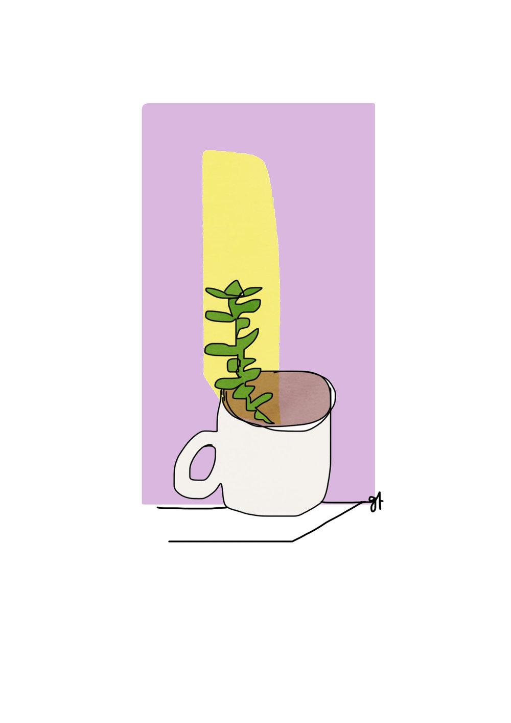 Cup Bud purple