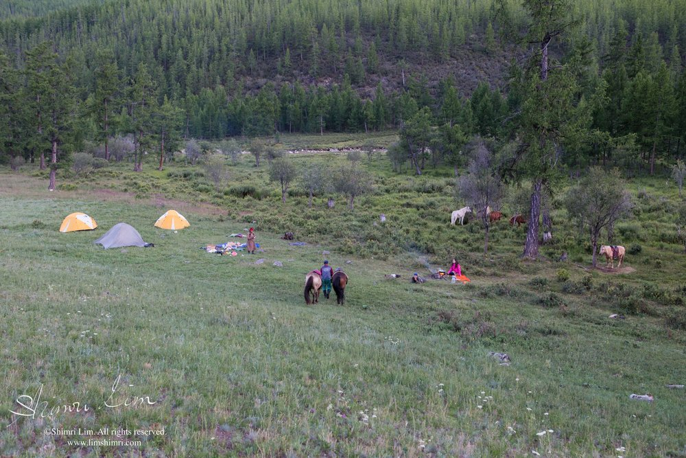 Our campsite enroute to the reindeer camp.