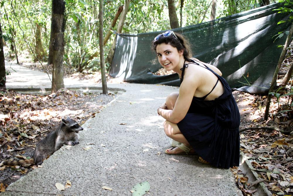 Mýval byl prvním zvířátkem, které jsem v parku viděla, tak jsem z toho měla radost, než jsem si dala dvě a dvě dohromady...