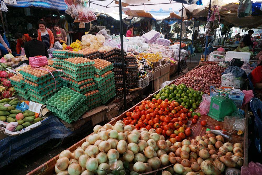 market01.jpg