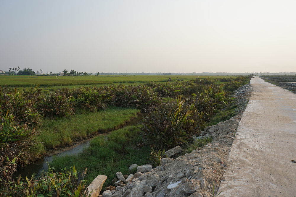 Biking through rice fields outside of Hoi An