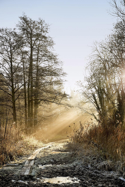 Path Way To Heaven