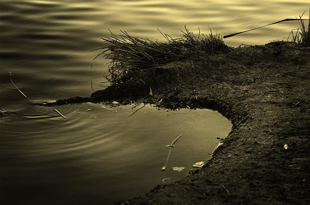 9_SwimmingOut.jpg