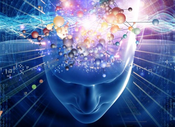 brain - HD.png