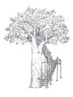 Tree platform.jpg
