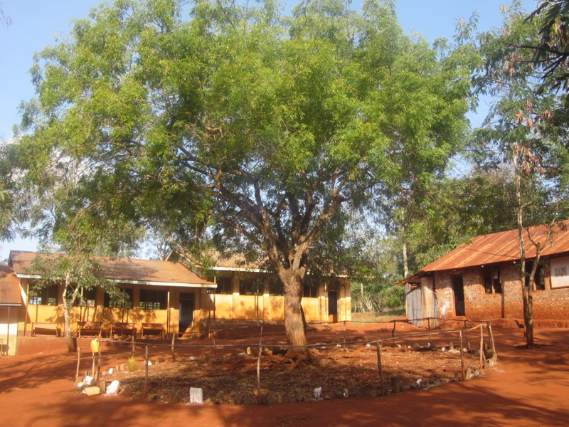 Efforts already made in Nyari School compound
