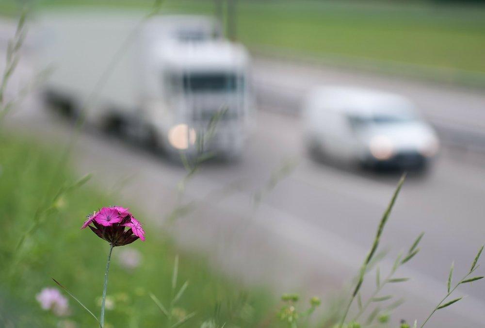 traffic-113843_1280.jpg