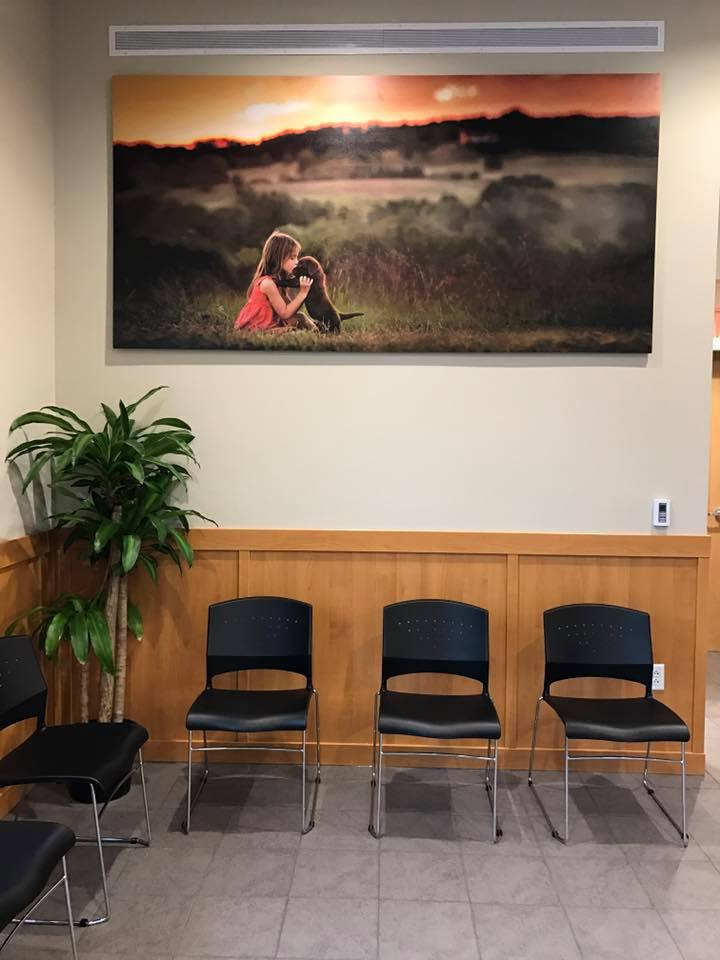 Pet portrait by Clare Ahalt Photography, a fine art portrait photographer located in Maryland, installed in Jefferson Veterinary Hospital