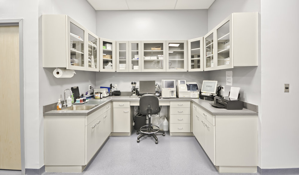 interior_photograph_veterinarian_frederick_MD_--25.jpg