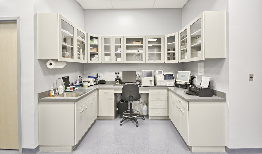 laboratory equipment for in house service by veterinarian in frederick md at Jefferson Veterinary Hospital