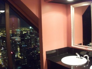 View from the top...in the bathroom!