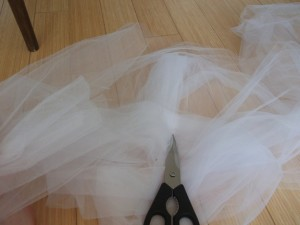 Tulle Time!!