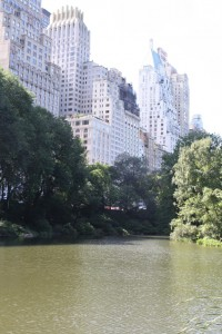 Central Park is my homeboy