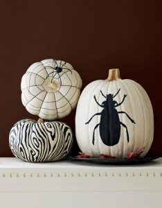 Pumpkins, Country Living style!