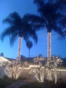 Christmas in Los Angeles!