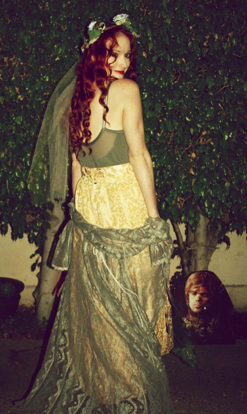 New Dress A Day - DIY - Halloween Costume - Sansa Stark