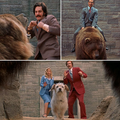 Anchorman - cast at the zoo