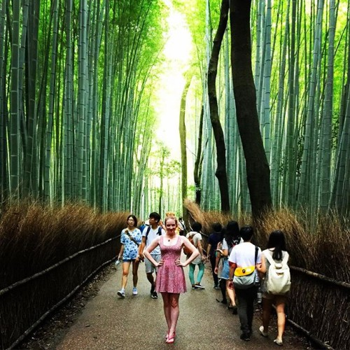 New Dress A Day - Japan - Bamboo Forest