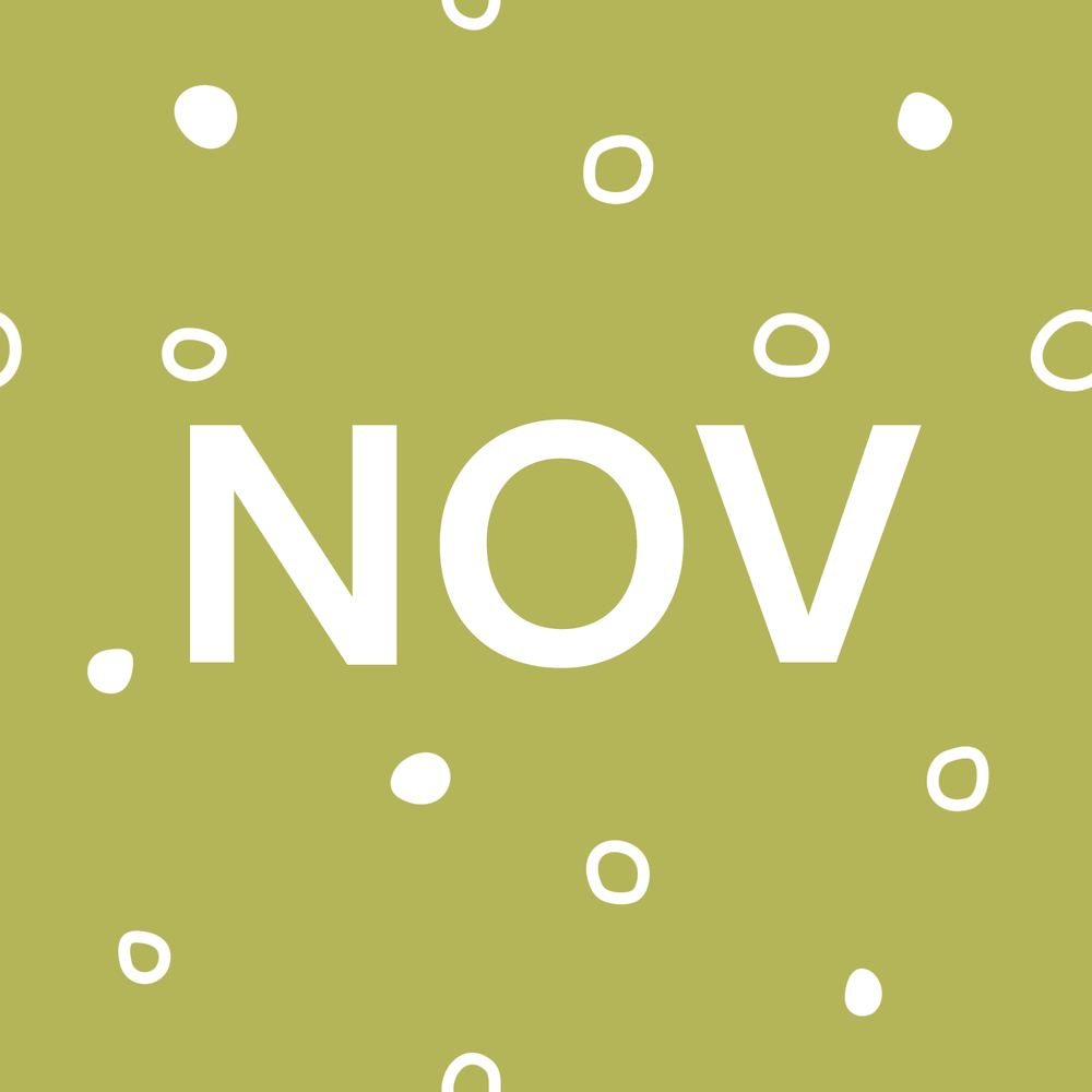 11 November.png