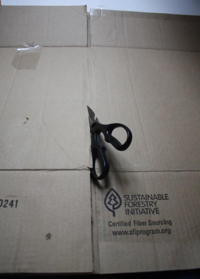 Cardboard backing