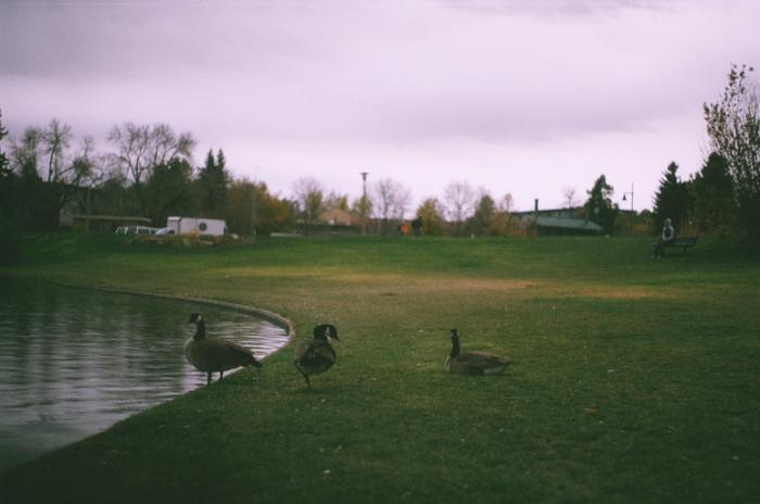 noah pond.jpeg
