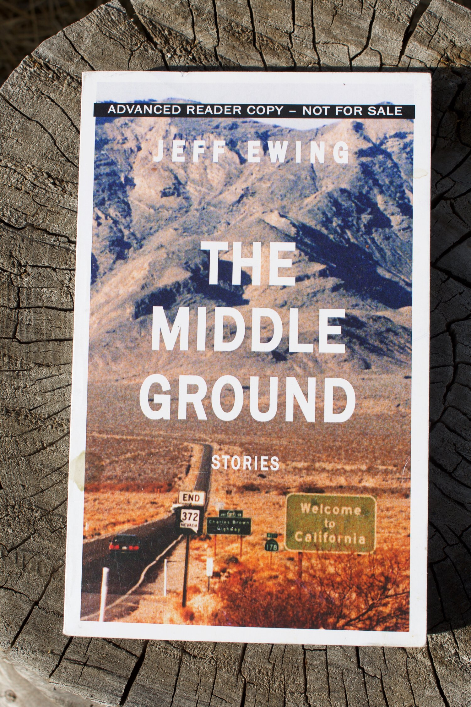 The Middle Ground Stories By Jeff Ewing