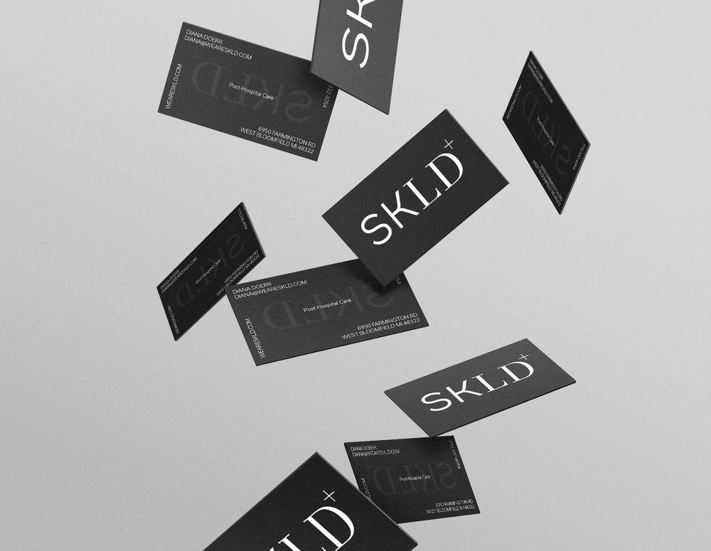 3D_SKLD+cards_gravity_2000w.jpg