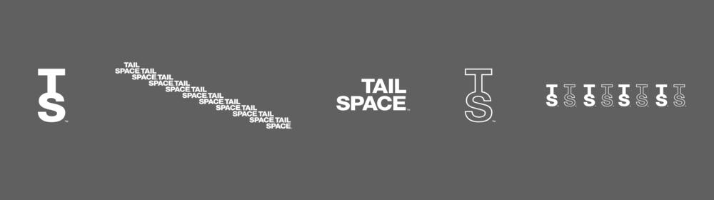 ts_logo-strip.png