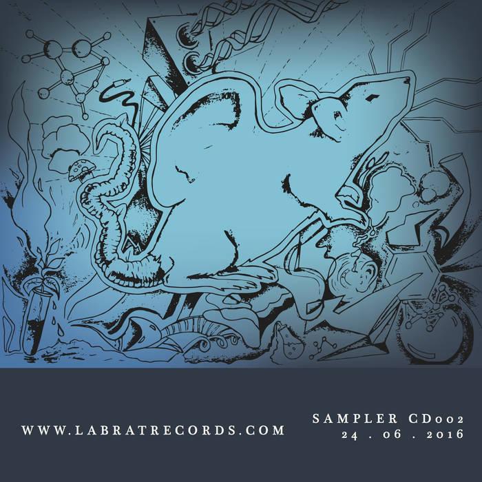 https://labratrecords.bandcamp.com/album/lab-rat-sampler-002